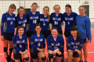 Read more about the article Volleyball Genesis Invitational