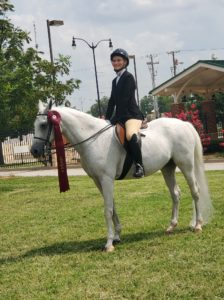 Read more about the article CEC celebrates Kayla Maddox – National Horse Championship